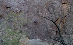 Rock Climbing Photo: Negress Wall, Owens River Gorge