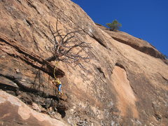Rock Climbing Photo: woody having fun soloing