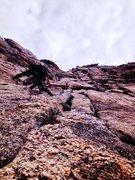 Rock Climbing Photo: The summit push of Longs Peak.