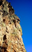 Rock Climbing Photo: High up on the arête finish. February 2014.