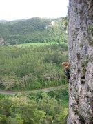 Rock Climbing Photo: Cora on the sharp end.