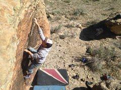 Rock Climbing Photo: Taylor working through the crux.