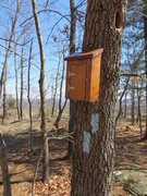 Rock Climbing Photo: Trail Register box at the top of Rattlesnake Cliff...