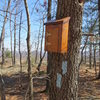 Trail Register box at the top of Rattlesnake Cliff.