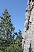 Rock Climbing Photo: sarah high up on boy scout wall, bowman lake, ca.