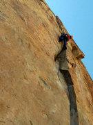 Rock Climbing Photo: A nice break from Disneyland!