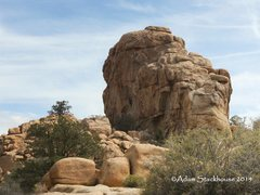 Rock Climbing Photo: Viewed from afar, climber on Leave It To Beaver, 5...