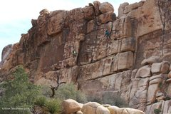 Rock Climbing Photo: Climbers at the Thin Wall.
