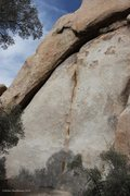 Rock Climbing Photo: Crux start of Great White Buffalo, 5.12a