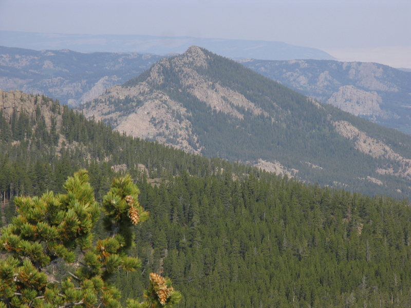Rock Climbing Photo: Buck Mountain as seen from Buffalo Peak.