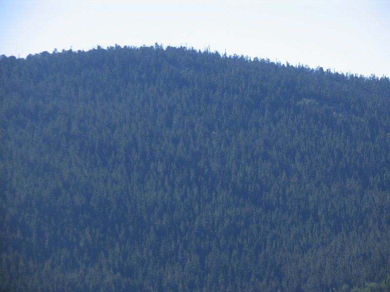 The summit ridge of Cherry Mountain as seen from the Russell Livestock Trail.