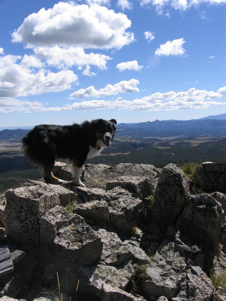 Lute on the summit rocks of Warbonnet.