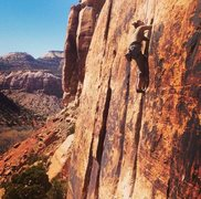 Rock Climbing Photo: Suzy Williams on Generic Crack
