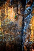 Rock Climbing Photo: Delicate movement into the crux on Tiny Propeller....