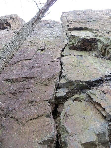 Rock Climbing Photo: Looking up Carey Corner
