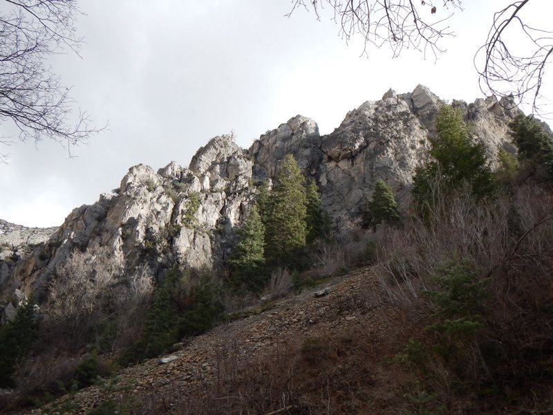 Rock Climbing Photo: The ridge from about 300 yrds.
