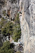 Rock Climbing Photo: Troy Corliss on lower section of Angels & Demons ....