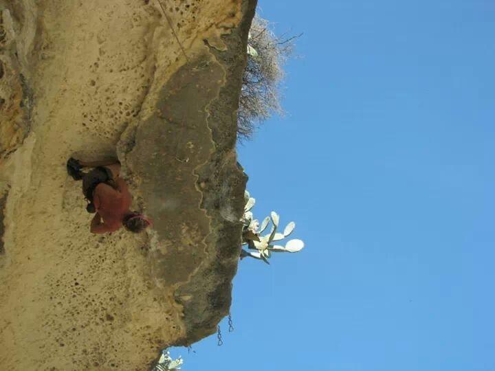Rock Climbing Photo: Knee bar, bat hang, and more...if you look really ...