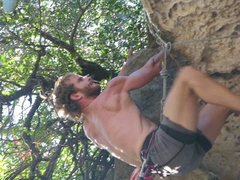 Rock Climbing Photo: Looking to top out into the shrubbery!