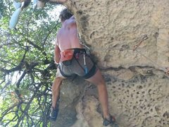 Rock Climbing Photo: Yes! Pulling the roof, and trees and whatever else...