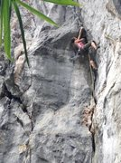 Rock Climbing Photo: buffalo love 7a+