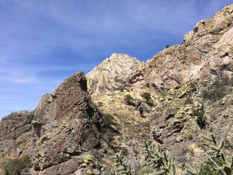 View of the Wedge from Organ Needle trail just below Juniper Saddle.