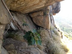 Rock Climbing Photo: Looking to the East from the Central Cave!