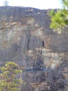 Rock Climbing Photo: One Shot Deal follows the scrubbed line on the upp...