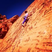 Rock Climbing Photo: The Meetup Wall