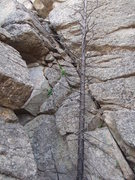Rock Climbing Photo:  A look at a typical rock surface near the summits...