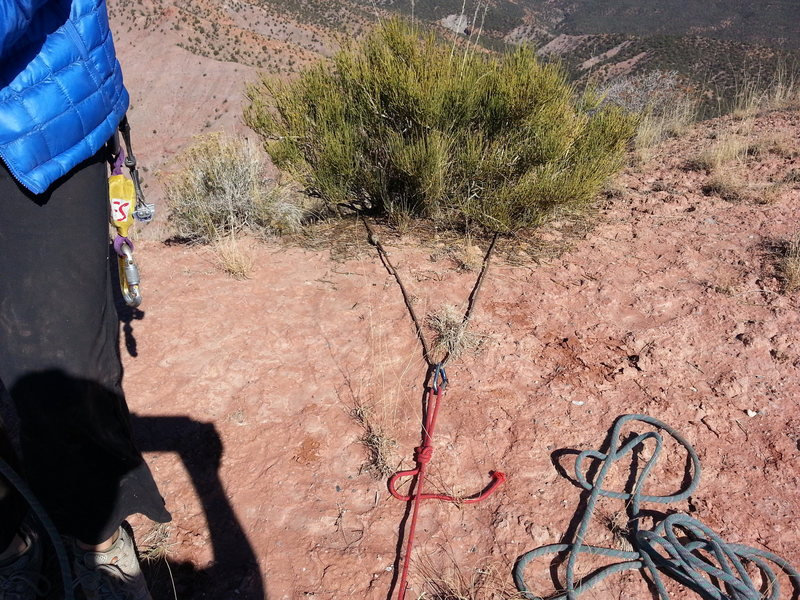 Entirety of the belay and rap anchor on the summit of Pt 6350, a towerette near Gateway, CO.