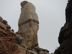 Rock Climbing Photo: Hacker's Tower from the canyon floor