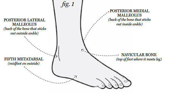 Rock Climbing Photo: Anatomy of an Ankle Injury
