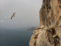 Rock Climbing Photo: View from P3 belay.