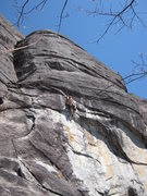 Rock Climbing Photo: Monica on Mettle Detector South Side Looking Glass...