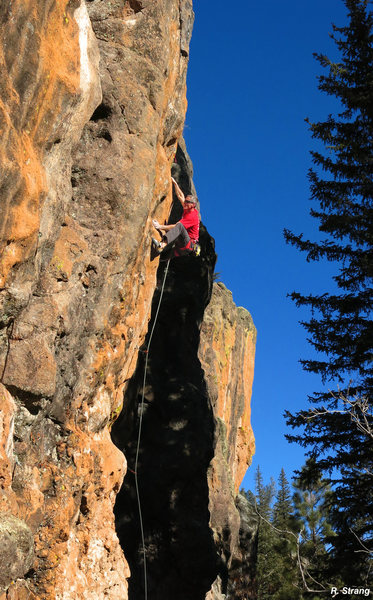 Ed up high in some golden light on<br> Golden Years (5.13a)