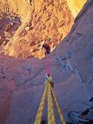 Rock Climbing Photo: last rapp off of Elephant Butte