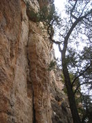 Rock Climbing Photo: The lower dihedral seen from the trail.