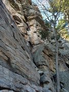 Rock Climbing Photo: Gear placing on Pink Laurel. Taken from in front o...