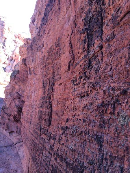 Babylon - Red Cliffs Desert Reserve 3