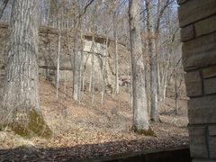 Rock Climbing Photo: Collins wall