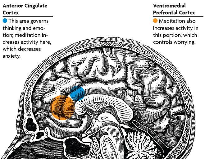 Rock Climbing Photo: Meditation in the brain