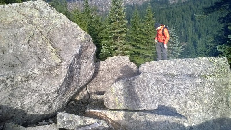 Part of the boulder field
