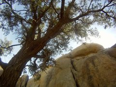Rock Climbing Photo: onsighted this route..no idea what it was. on the ...