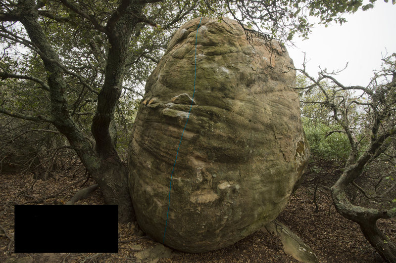Rock Climbing Photo: Twig Toe
