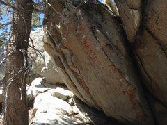 Rock Climbing Photo: JCVD
