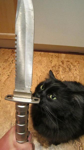 yer knife