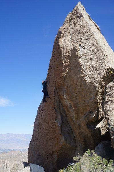 Rock Climbing Photo: Olivia moving through crimps.
