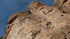 Rock Climbing Photo: Berkie at the top.
