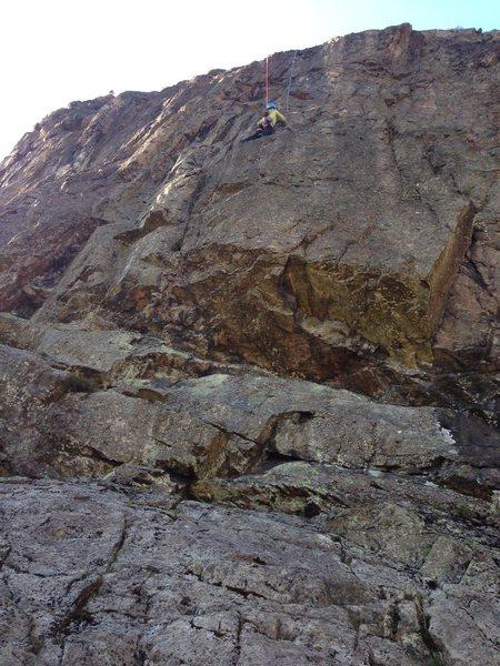 Rock Climbing Photo: Centipede... I think?
